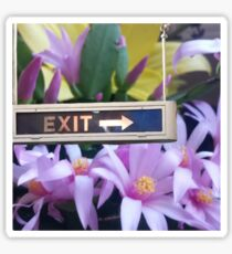Exit with Grace Sticker