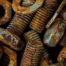 Nuts n Bolts by Keith G. Hawley