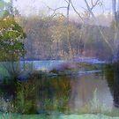 A Dream in Nature  by fiat777