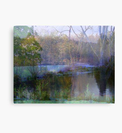 A Dream in Nature  Canvas Print