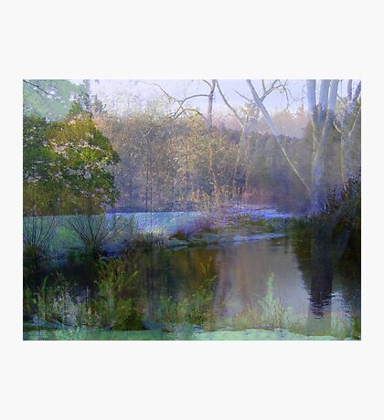 A Dream in Nature  Photographic Print
