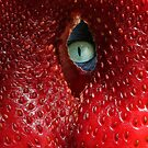 STRAWBEREYE! by Heather Friedman