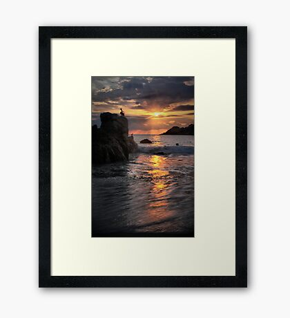 Nature's Magic Framed Print
