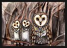 Three barn owls by Jenny Wood