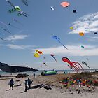 'UP SHE RISES!' Colourful International Kite Festival, Adelaide. by Rita Blom