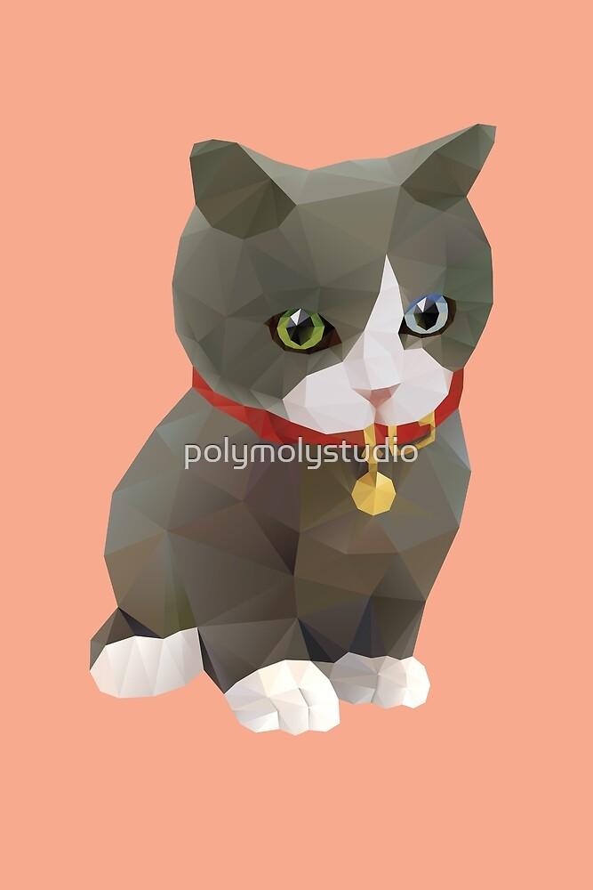 Kitten Polygon Art by polymolystudio