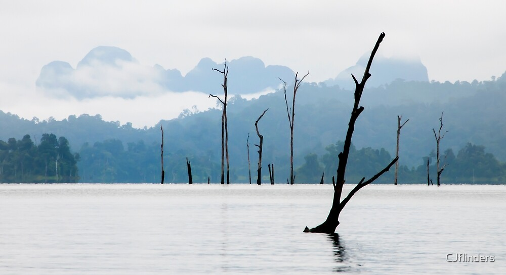 still waters by CJflinders