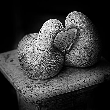 Love Doves by flyingdoc