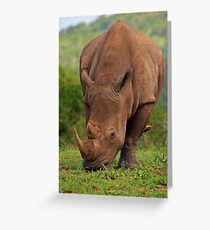 Brute Force and ignorance Greeting Card