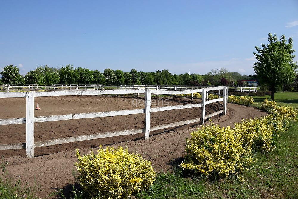 ranch with corral for horses by goceris