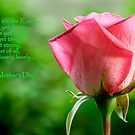 mothers are like roses by lensbaby