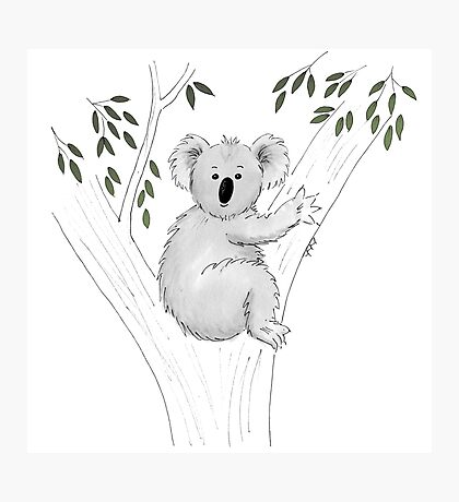 Koala Heaven Photographic Print