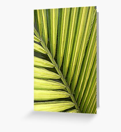A Single Palm Frond Greeting Card
