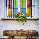 Multi-colored window by Silvia Ganora