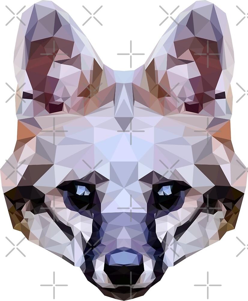 Gray fox by 0l-Fox-l0