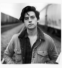 COLE SPROUSE SCHWARZWEISS Poster