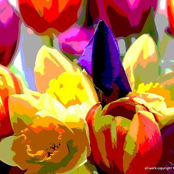 SPRING FLOWERS by geaannunziata