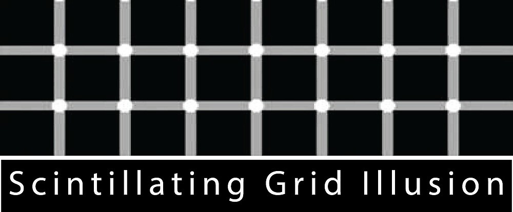 Simple Grid Illusion T-Shirt by teeknowledge