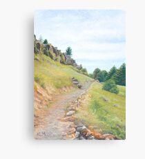 Tantanoola Track Canvas Print