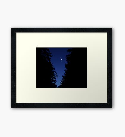 Venus In The Trees Framed Print