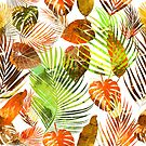 Tropical leaves of palm tree, monstera and banana leaves by Lusy Rozumna