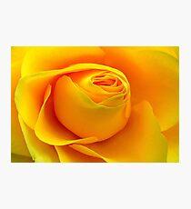 Yellow Folds .. Photographic Print