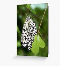 Paper Kite II Greeting Card