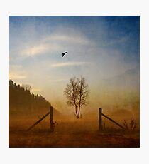 Echoes Of Silence Photographic Print