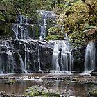 Purakaunui Falls by Charles Kosina