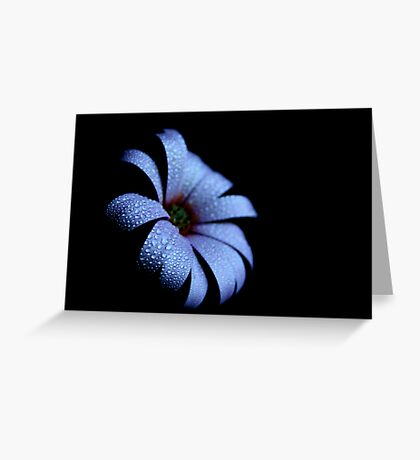 Baby Blue in the Dark Greeting Card
