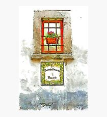 Window with flower pot Photographic Print