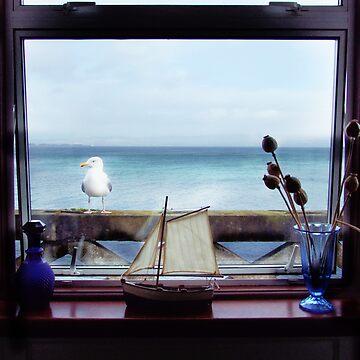I spy with my beady seagull eye... by artyfifi