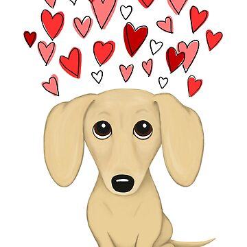 Cream Short Haired Dachshund with Hearts by ShortCoffee