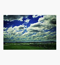 Hunter Valley Mount Pleasant Estate in Color Photographic Print