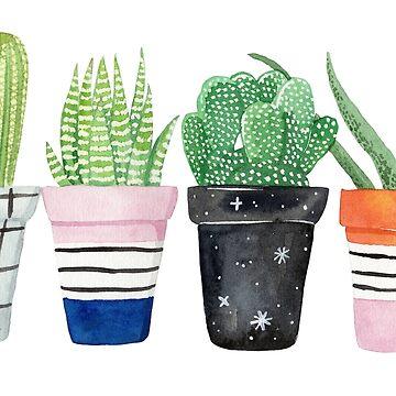 Cacti, pot plants by ellietography