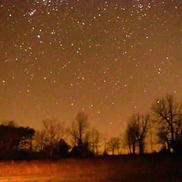 Night Sky by PirateParade