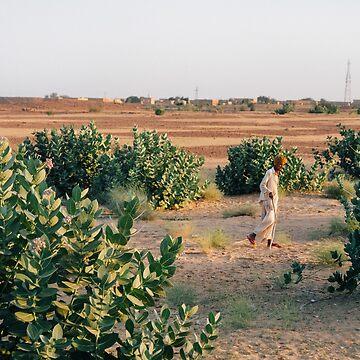 Desert Wanderer by strangerandfict