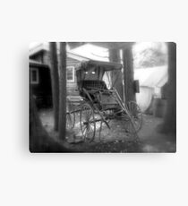 The Buggy Metal Print