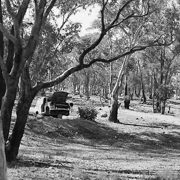 Dumped, Trunkey Creek, NSW, Australia by chrisjoy
