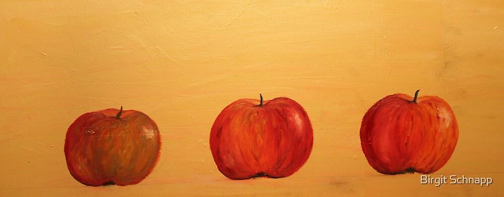 apples by Birgit Schnapp