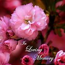In Loving Memory Spring Pink Cherry Blossoms by Shelley Neff