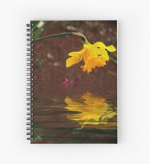 Daffodil Reflection Spiral Notebook