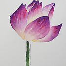 Lotus Flower #7 by karenlaurieart
