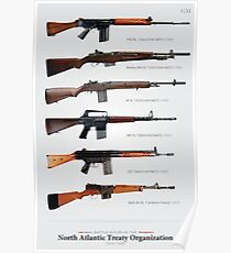"Battle Rifles of NATO Poster (30x47"") Poster"