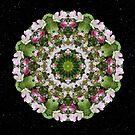 Faerie Circle by Karen Casey-Smith
