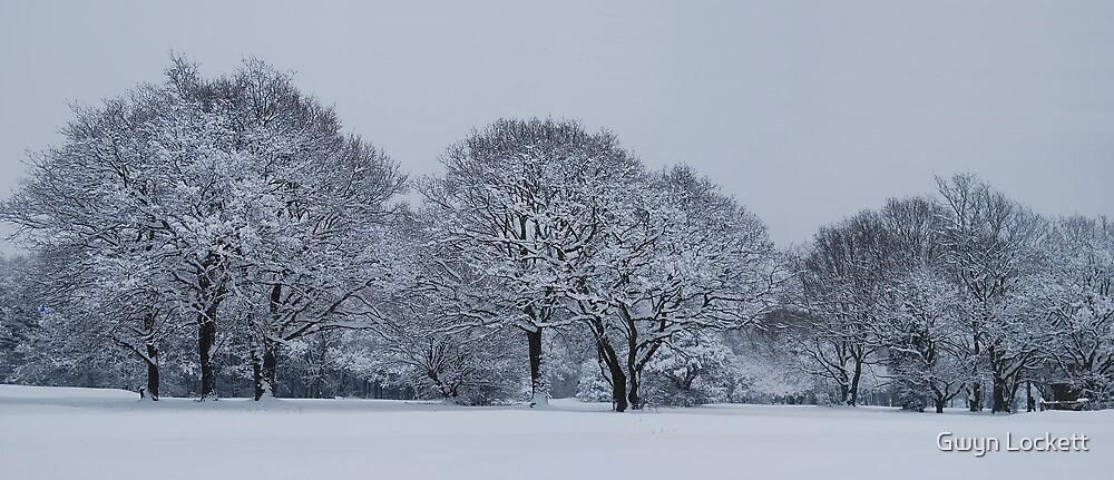 Winter wonderland by Gwyn Lockett