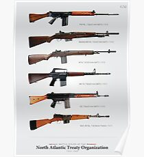 "Battle Rifles of NATO Poster (23.4x32.3"") Poster"