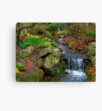 Spring in Beacon Hill Park Canvas Print