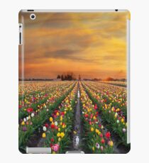 Sunset over colorful Tulip flower fields in full bloom spring season in Woodburn Oregon iPad Case/Skin