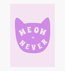 Meow or never Photographic Print